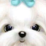 Profile photo of Connie